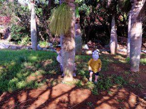 近所の公園でゲーム遊び